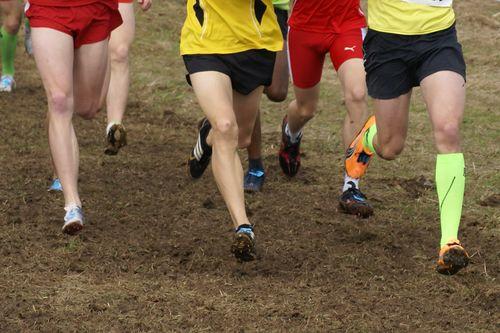 Baden-Württ. Crosslauf-Meisterschaften
